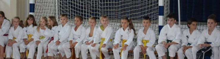 KARATE KAMP DOBRNA IN POLAGANJE PASOV